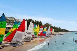 sailboats lined up on shore of sandy torquay beach